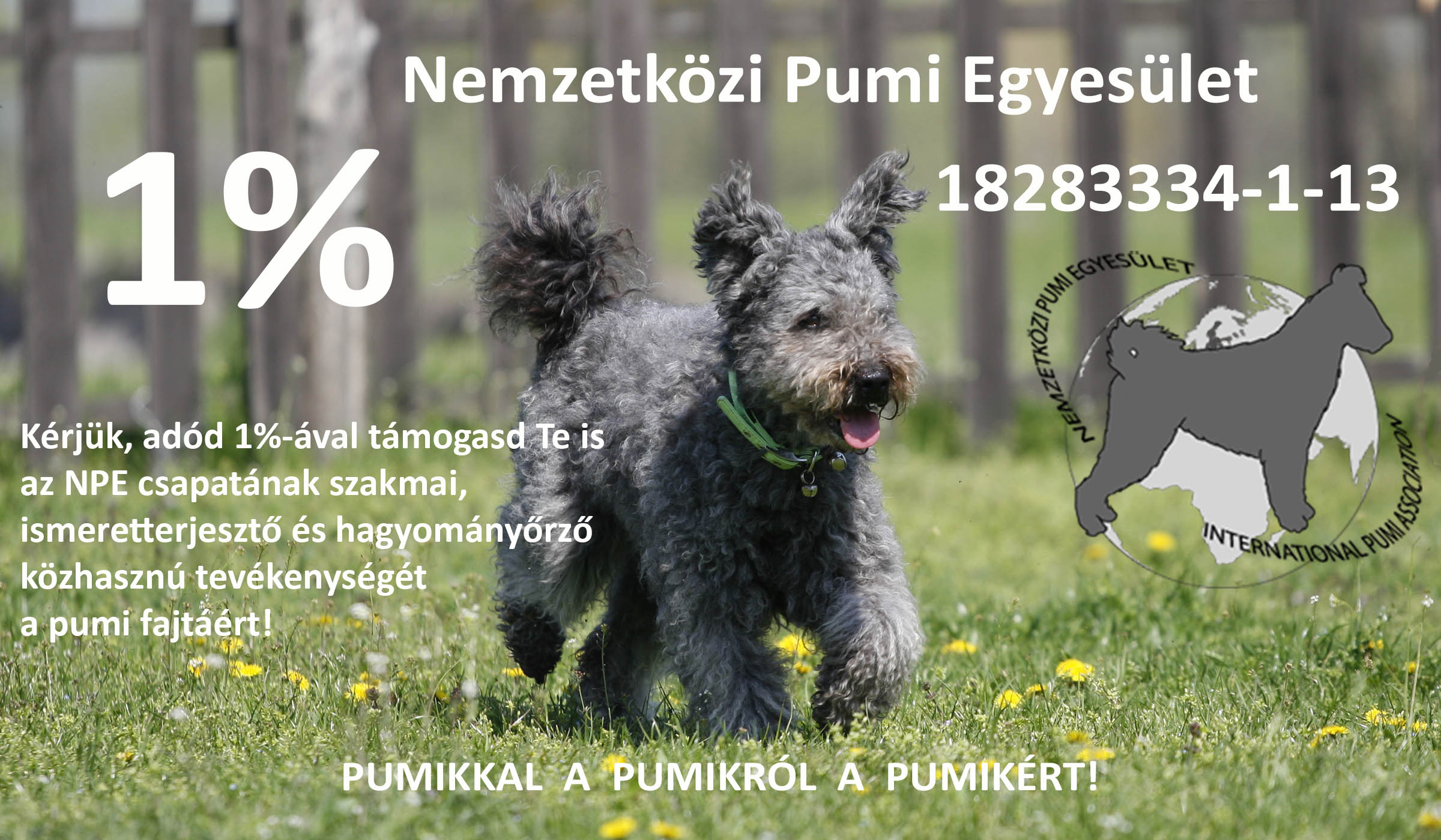 PUMIK 1%